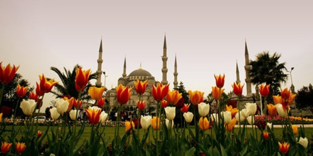 page_osmanli39nin-sevgilisi-lalenin-serguzesti_506731853