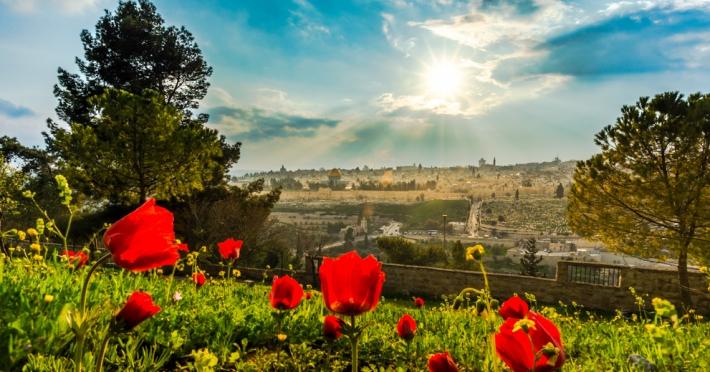 Pelerinaj Israel Tara Sfanta 5 zile 2019