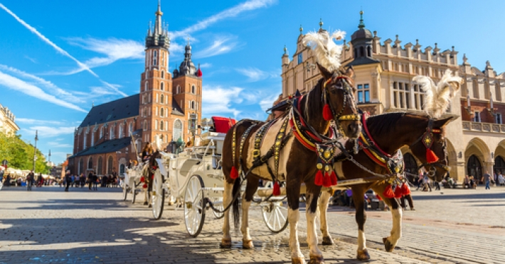 Circuit Polonia Germania | 8 zile - Autocar | 2020